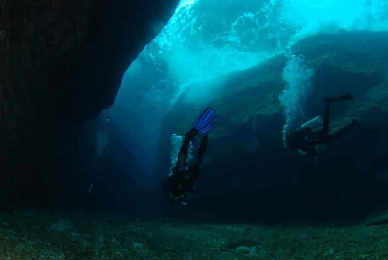 December 2010 Dive Report – Tis the season – to go diving!