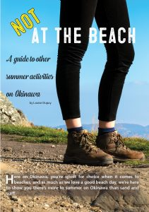 Not at the Beach cover page