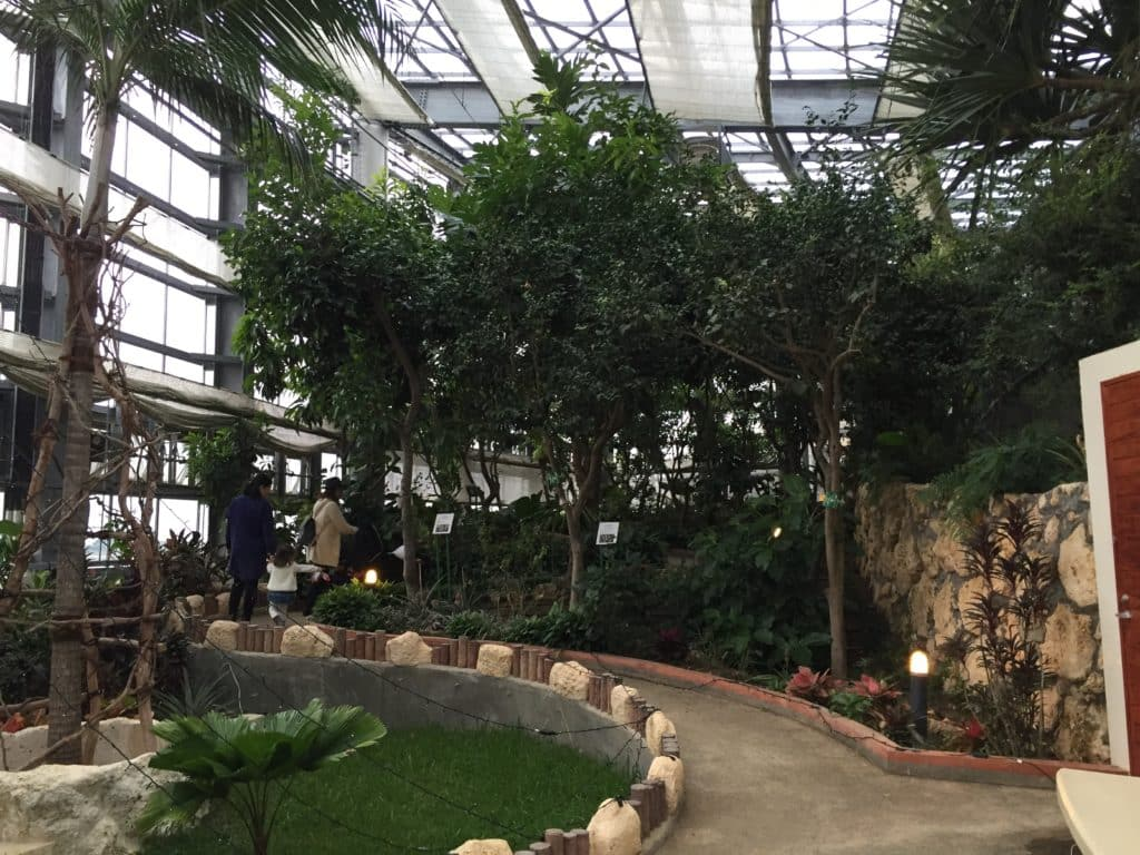 Inside gardens at Itoman Tourist Farm