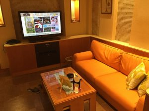Love hotel room with seating area and TV