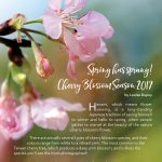 Total Okinawa Magazine Feb & Mar 2017 - Cherry Blossom Season 2017