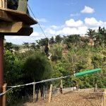 Forest Adventure Zip Line Park