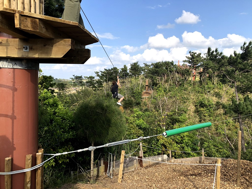 Forest Adventure Okinawa Zip Line