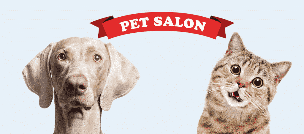 111 Okinawa Pet Salon