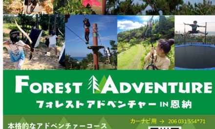 Forest Adventure January Discount!