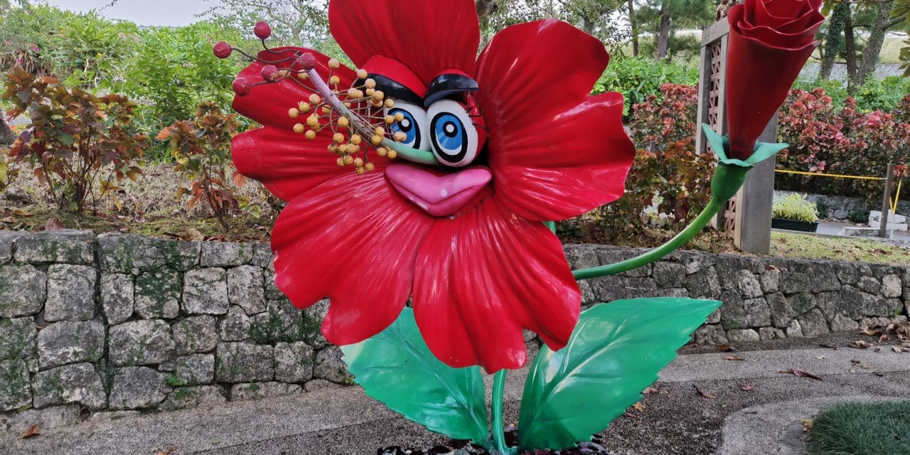 Trees of Green, Red Roses Too – Okinawa Valentine's Day 2020
