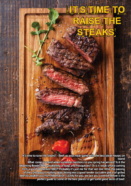 It's Time To Raise The Steaks Intro Page