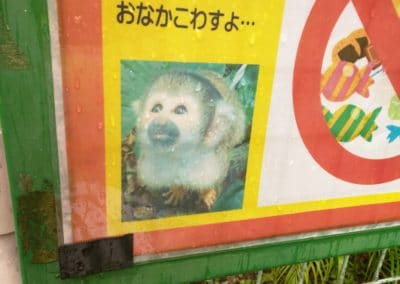 Squirrel Monkey Sign