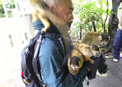 Man holding four squirrel monkeys